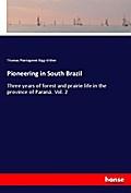 Pioneering in South Brazil