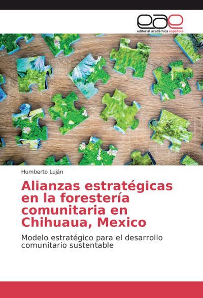 Alianzas estratégicas en la forestería comunitaria en Chihuaua, Mexico