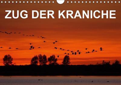 Zug der Kraniche (Wandkalender 2019 DIN A4 quer): Stimmungsvolle Fotografien von Grauen Kranichen in Norddeutschland (Monatskalender, 14 Seiten ) (CALVENDO Tiere) - Calvendo - Kalender, Deutsch, BIA - birdimagency, Stimmungsvolle Fotografien von Grauen Kranichen in Norddeutschland (Monatskalender, 14 Seiten ), Stimmungsvolle Fotografien von Grauen Kranichen in Norddeutschland (Monatskalender, 14 Seiten )