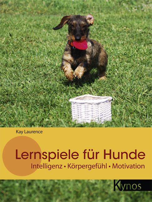 Lernspiele für Hunde: Intelligenz - Körpergefühl - Motivation Kay Laurence