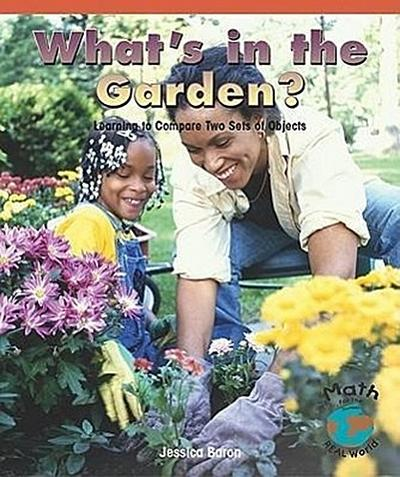 What's in the Garden?: Learning to Compare Two Sets of Objects