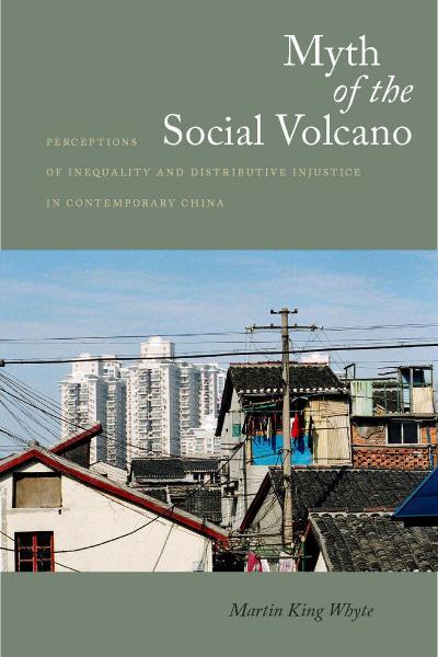 Myth of the Social Volcano