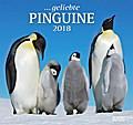 Geliebte Pinguine 2018 - DuMont Wandkalender