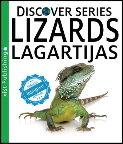 Lizards / Lagartijas