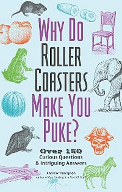 Why Do Roller Coasters Make You Puke