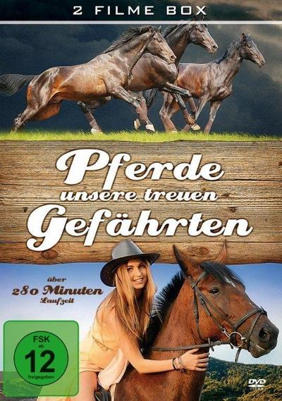 Pferde,unsere treuen Gefährten