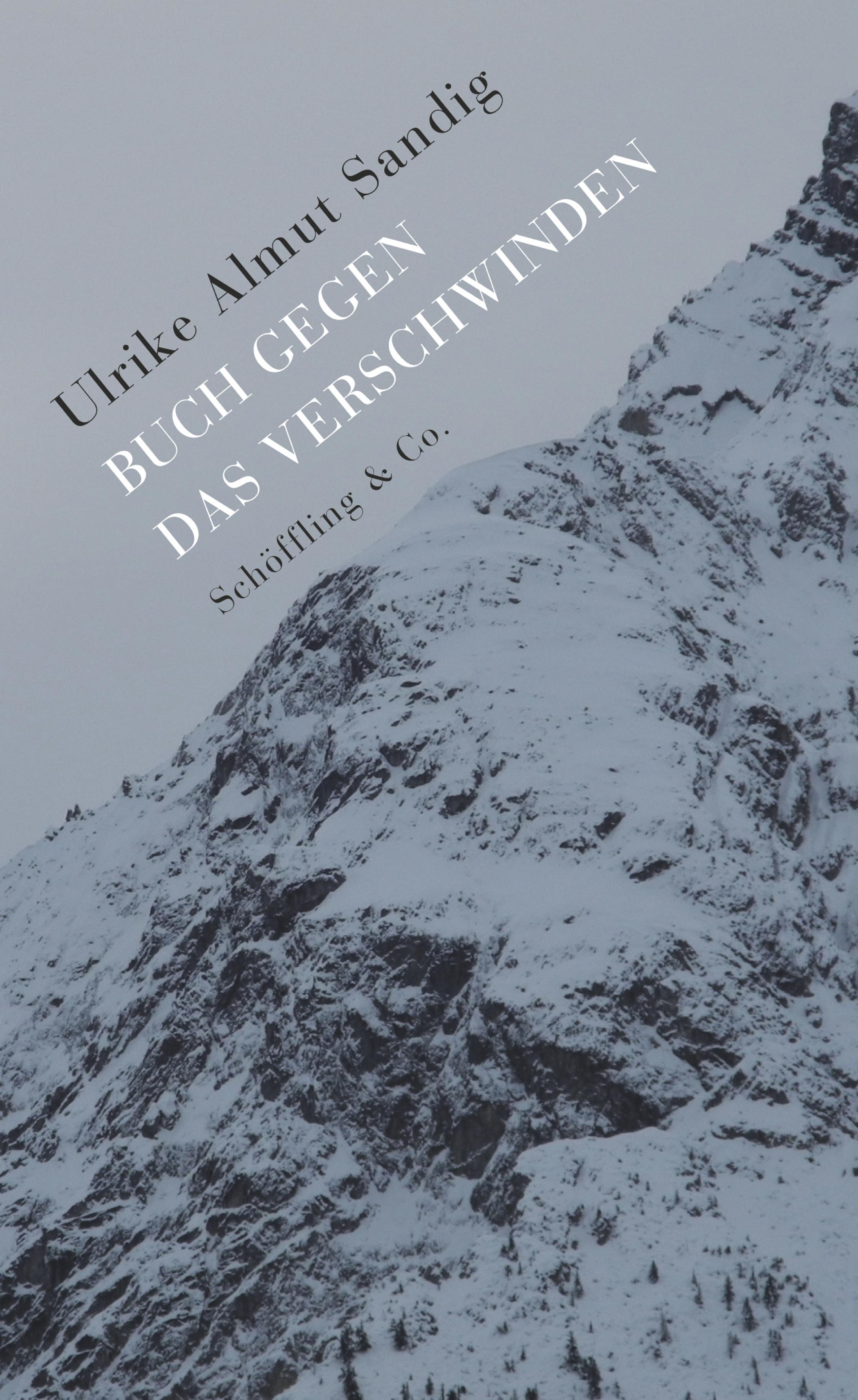 Buch gegen das Verschwinden Ulrike Almut Sandig 9783895611889