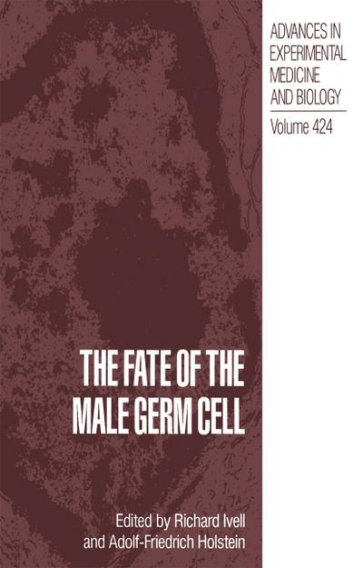 Fate of the Male Germ Cell