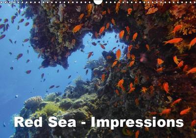 Red Sea - Impressions (Wall Calendar 2019 DIN A3 Landscape)