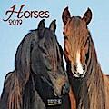 Horses 2019. Broschürenkalender