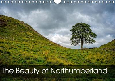 The Beauty of Northumberland (Wall Calendar 2019 DIN A4 Landscape)