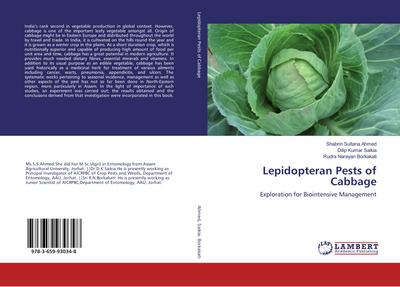 Lepidopteran Pests of Cabbage