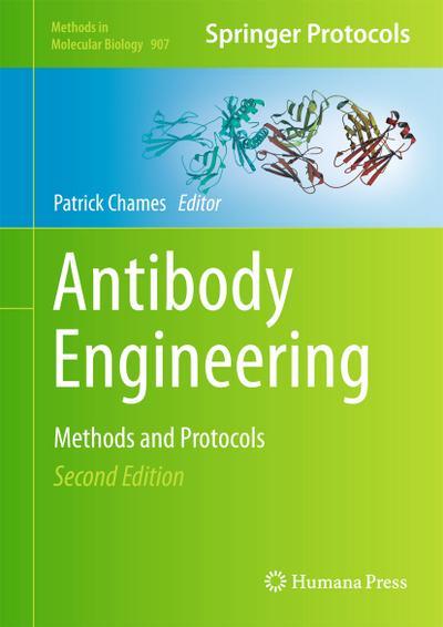 Antibody Engineering