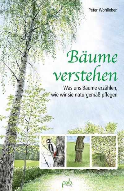 Bäume verstehen