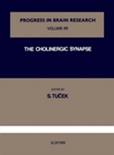 Cholinergic Synapse