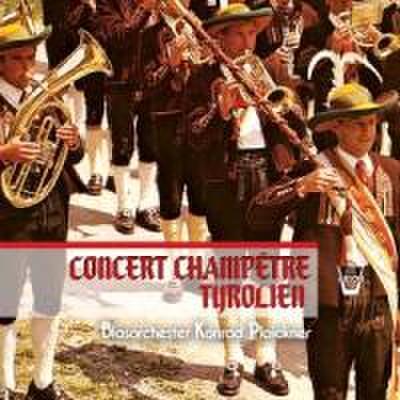 Ländliches Konzert in Tirol