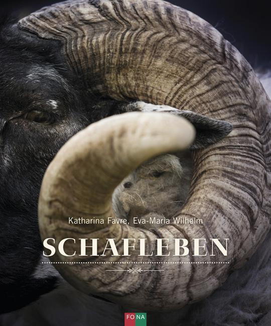 Schafleben ~ Katharina Favre ~  9783037810842