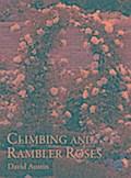 Climbing and Rambler Roses