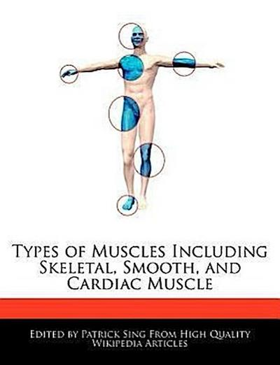 Types of Muscles Including Skeletal, Smooth, and Cardiac Muscle