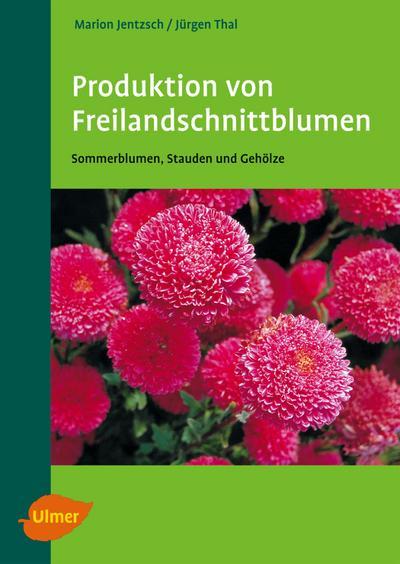 Produktion von Freilandschnittblumen