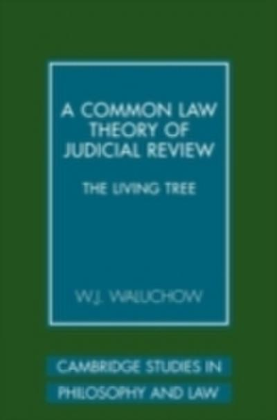 Common Law Theory of Judicial Review