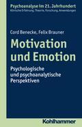 Motivation und Emotion: Psychologische und psychoanalytische Perspektiven (Psychoanalyse im 21. Jahrhundert)
