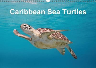 Caribbean Sea Turtles (Wall Calendar 2018 DIN A3 Landscape)