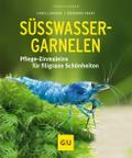 Süßwasser-Garnelen: Pflege-Einmaleins für fil ...