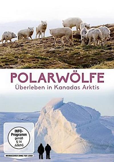 Polarwölfe - Überleben in Kanadas Arktis