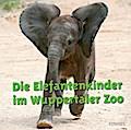 Die Elefantenkinder im Wuppertaler Zoo   ; Fo ...