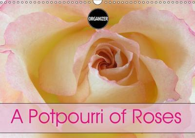 A Potpourri of Roses (Wall Calendar 2019 DIN A3 Landscape)