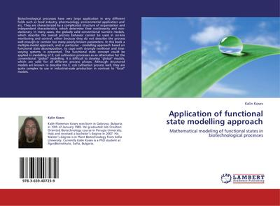 Application of functional state modelling approach