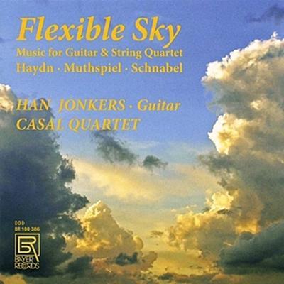 Flexible Sky-Music for Guitar & String Quartet