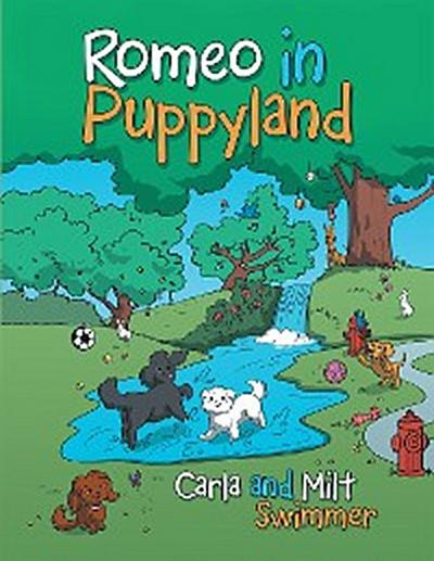 Romeo in Puppyland