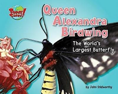 Queen Alexandra Birdwing: The World's Largest Butterfly
