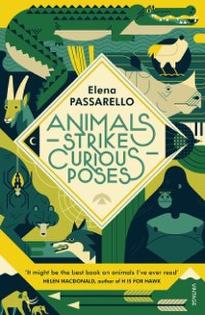 Animals Strike Curious Poses