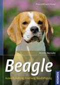 Beagle; Auswahl, Haltung, Erziehung, Beschäft ...