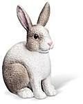 tiptoi® Kaninchen