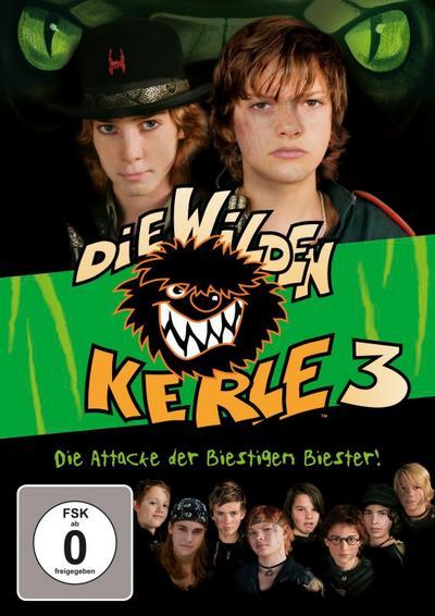Die wilden Kerle 3 - Der Film