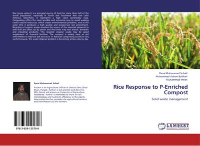 Rice Response to P-Enriched Compost