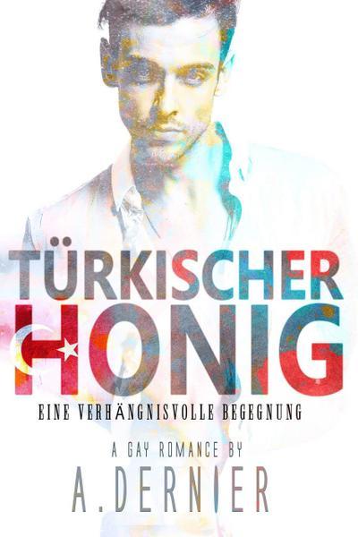 Türkischer Honig: Eine verhängnisvolle Begegnung - Gay Romance