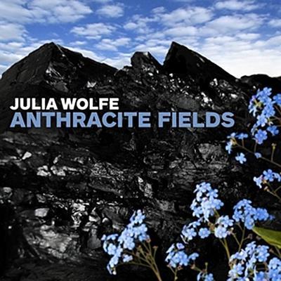 Anthracite Fields