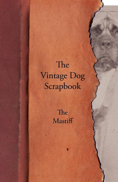 The Vintage Dog Scrapbook - The Mastiff