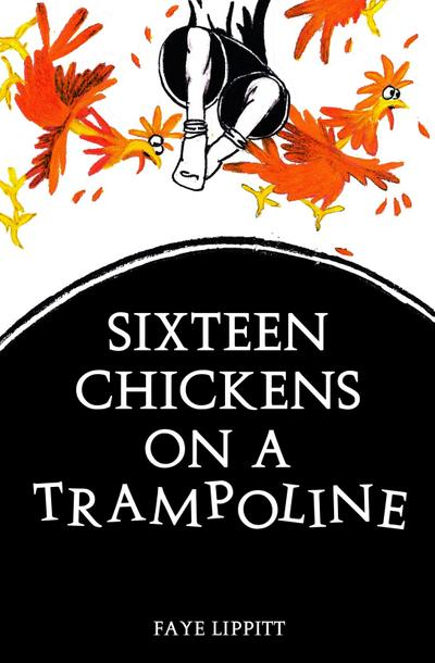 16 Chickens On A Trampoline