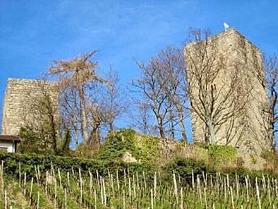 Burg Windeck - 200 Teile (Puzzle)
