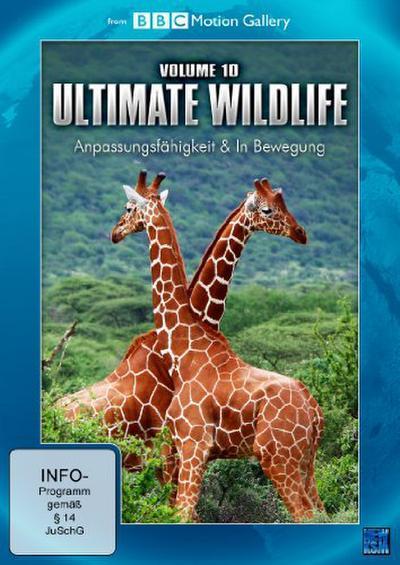 BBC Motion Gallery: Ultimate Wildlife - Vol. 10: Anpassungsfähigkeit & In Bewegung - KSM Gmbh - DVD, Deutsch| Englisch, , Anpassungsfähigkeit & In Bewegung, Anpassungsfähigkeit & In Bewegung