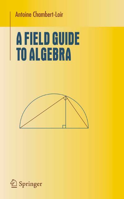 A Field Guide to Algebra
