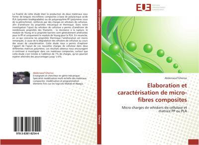 Elaboration et caractérisation de micro-fibres composites