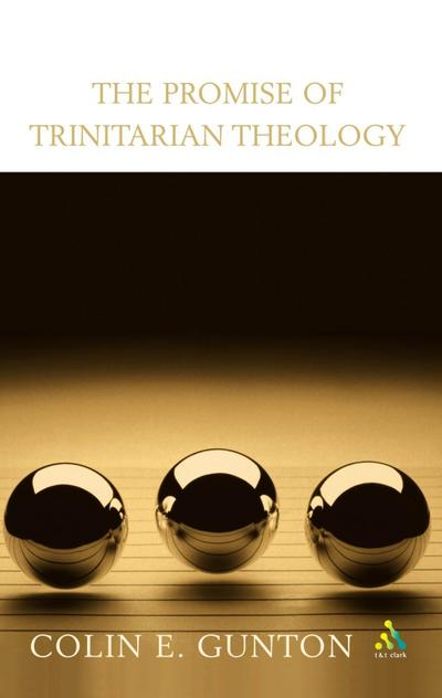 Promise of Trinitarian Theology