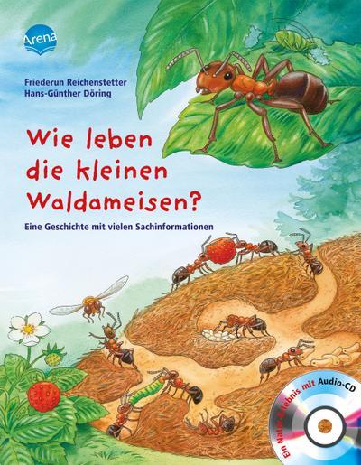 Wie leben die kleinen Waldameisen?